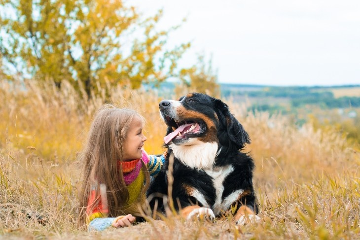 girl and bernese mountain dog